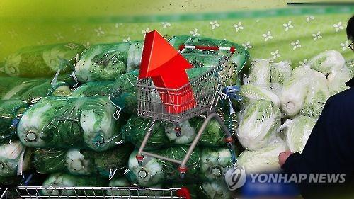 폭염에 배추·무 가격 '고공행진'… 과일값도 올라