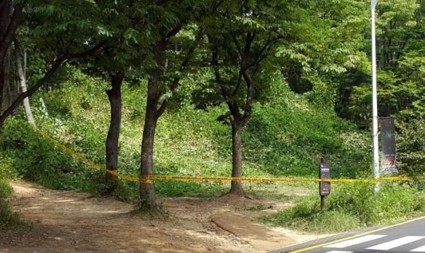 토막시신 발견된 서울대공원 주차장 인근 수풀(사진=연합뉴스)