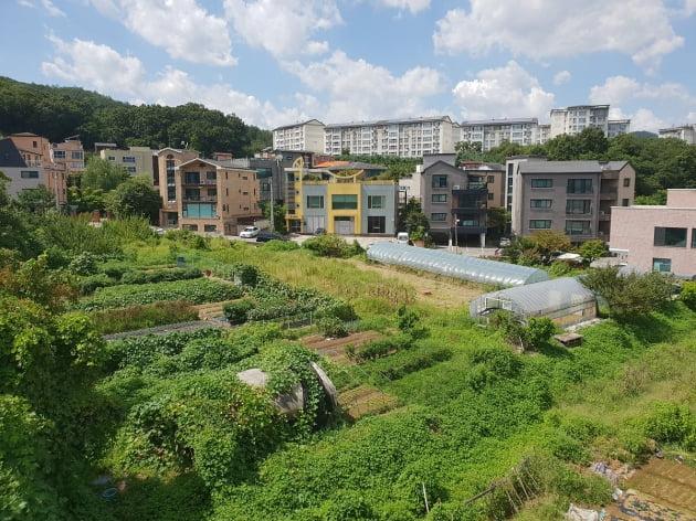 개발제한구역(그린벨트)로 지정된 서울 강남구 세곡동 일대.  한경DB