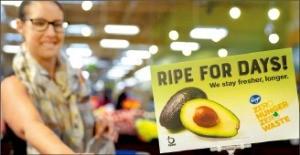 채소·과일 껍질 추출물로 농산물 유통기한 두 배 늘린다