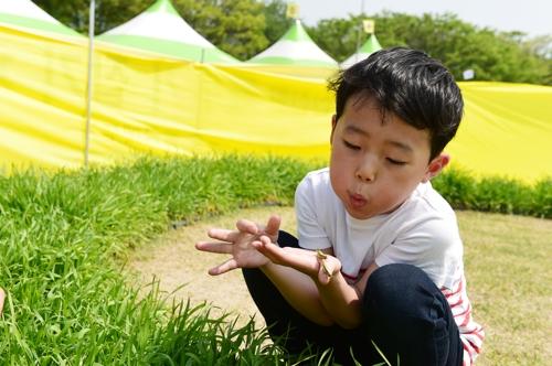 '메뚜기로 심리 치유'…장성군 곤충산업 뛰어든다