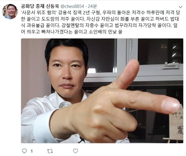 강용석 저격/사진=신동욱 총재 트위터 캡처