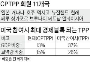 CPTPP 출범 7개월…5년째 검토만 하는 정부