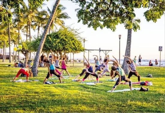 하와이 현지에서 즐기는 요가 체험  /티몬 제공