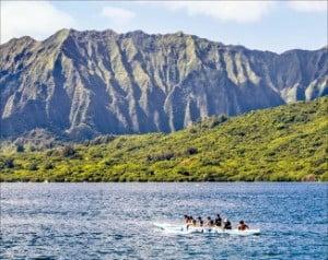 하와이 해양 액티비티 프로그램  /티몬 제공