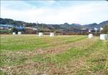 [한경 매물마당] 인천 서창지구 중심가 병원 상가 등 7건