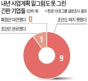 """삼성도 현대車도…""""내년 사업계획 백지"""""""