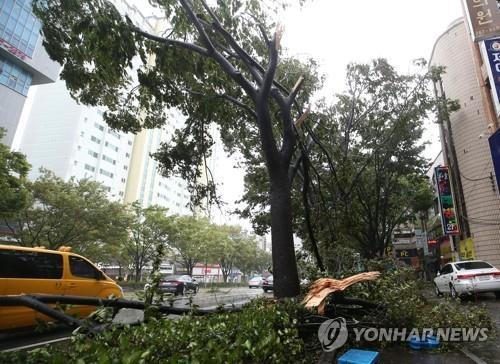 태풍 '콩레이' 떠났지만…실종·침수·붕괴 곳곳 상처