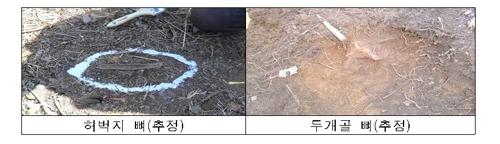 DMZ서 국군전사자 유해 첫 수습…인식표 주인공 박재권 이등중사
