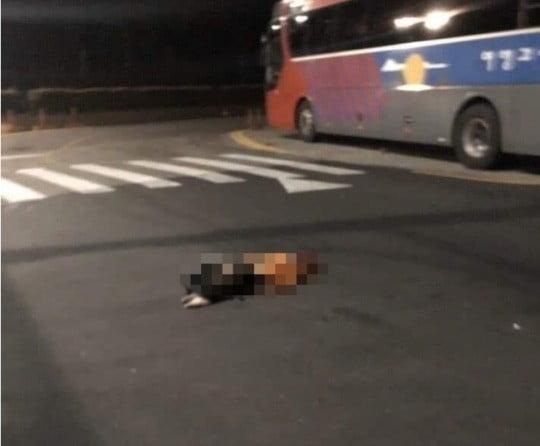 범인에게 맞아 쓰러진 피해자 [사진=페이스북]
