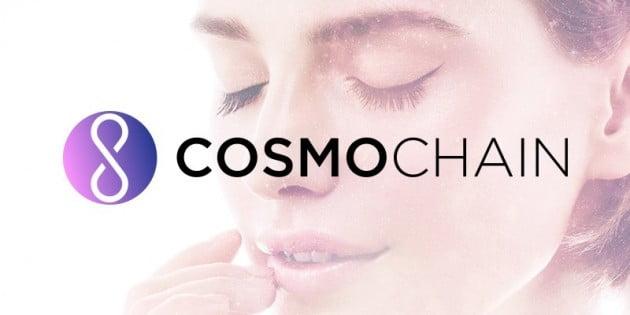 코스모체인, 국내/외 유력 크립토 투자사로부터 후속 투자 유치 성공