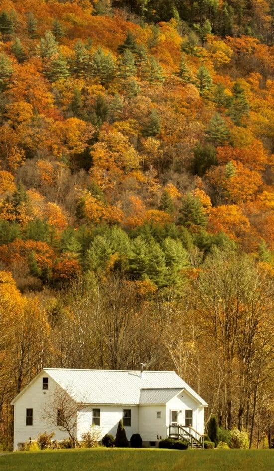 메이플 로드를 달리며 볼 수 있는 캐나다의 가을풍경.