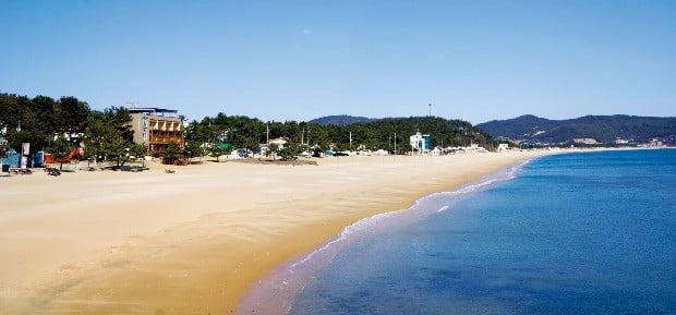 신지도 최고 풍경으로 꼽히는 명사십리 해변. 이곳 백사장의 모래찜질은 관절염과 신경통에도 효과가 있는 것으로 유명하다.