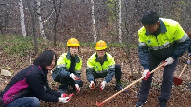 한라시멘트, '강릉 석회석 광산 복구지역에서 멸종위기 야생식물 복원 행사' 개최