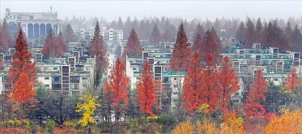 서울 반포주공1단지 1·2·4주구와 신반포4지구가 3일 재건축을 위한 관리처분계획인가를 받았다. 전문가들이 서울 최고 부촌으로 거듭날 것으로 예상하는 반포동 일대 아파트.  /강은구  기자 egkang@hankyung.com