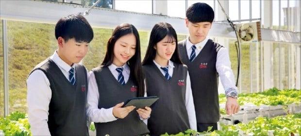 한국디지털미디어고 학생들이 교내 스마트팜에서 재배하는 농작물을 살펴보고 있다. /한국디지털미디어고 제공