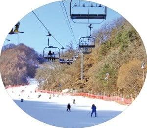 雪레는 스키시즌…여기서 雪쳐보자
