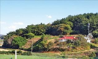 [한경 매물마당] 오산시 로데오광장 코너 카페 등 7건