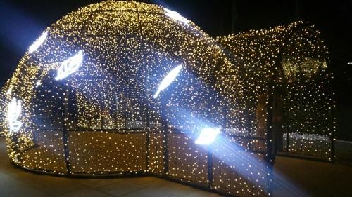 서울식물원 두달간 97만명 찾았다…24일부터 '윈터가든' 변신