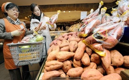군고구마가 거리에서 사라지고 있다. 생산량이 줄어든 탓에 가격이 크게 뛰고 있어서다. 서울의 한 대형마트에서 한 소비자가 점원의 안내를 받아 고구마를 고르고 있다. 한경DB.