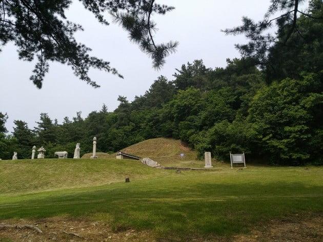 경기도는 흥선대원군의 후손인 이청씨로부터 남양주 창현리에 있는 대원군 묘역과 주변 토지 12만9천935㎡를 기증받았다고 4일 밝혔다. [경기도 제공]