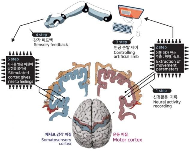 BMI 기술의 원리