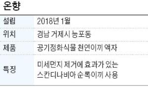 """'천연이끼 액자', """"미세먼지 제거하는 천연이끼로 인테리어 완성"""""""