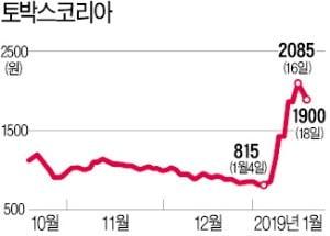 '상어가족 테마株' 토박스코리아, CB·BW 주식 전환에 상승 '찬물'