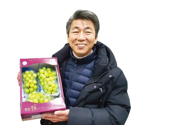 박용하 천안포도수출유통센터장