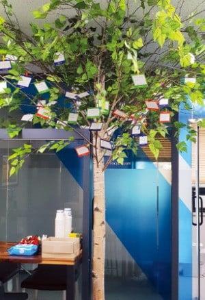 하이센스바이오의 서울 봉천동 본사 사무실에는 임직원의 희망 편지가 매달려 있는 소망나무가 서 있다.