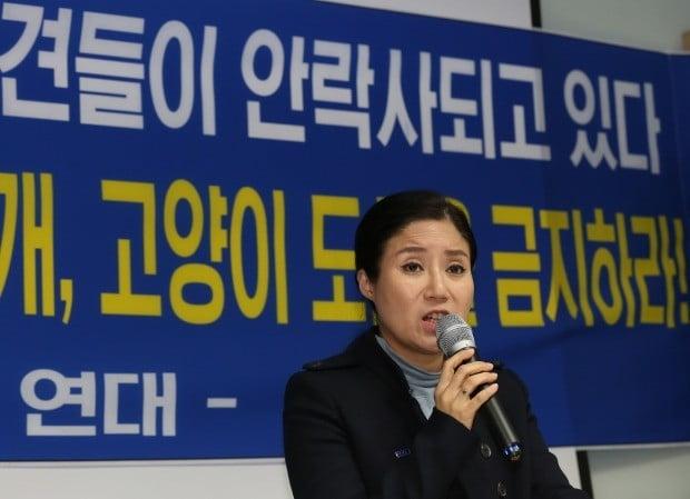 의혹 해명하는 박소연 케어 대표 (사진=연합뉴스)