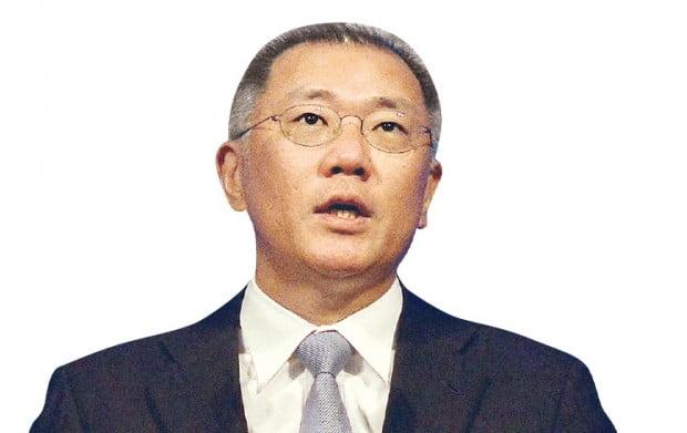 정의선 현대차그룹 총괄수석부회장