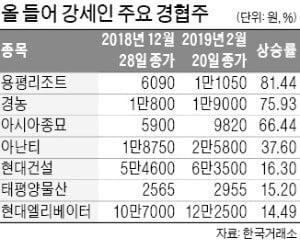 하노이發 훈풍…돌아온 경협株