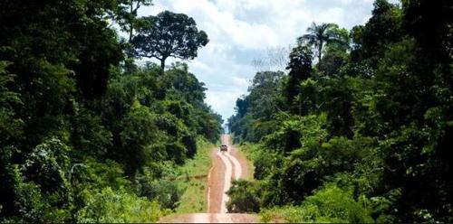 브라질 보우소나루 정부, 아마존 열대우림 개발 강행할 듯