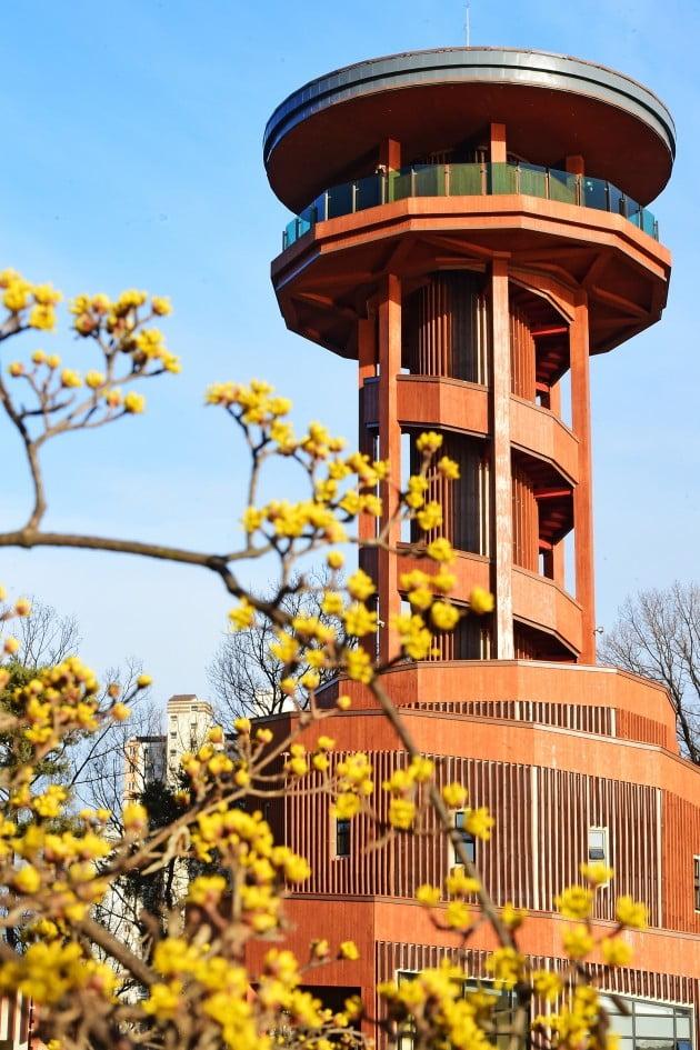 수원시, 오는 21일 광교호수 한눈에 볼 수 있는 '프라이부르크 전망대' 개관