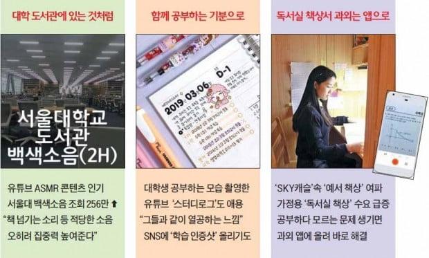 '서울대 도서관 백색소음' 듣고 인스타에 '출석 체크'