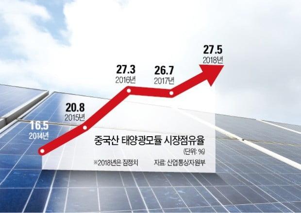 신재생에너지 시장 커지는데…몰려오는 중국산 모듈, 국내 태양광 기업 '먹구름'