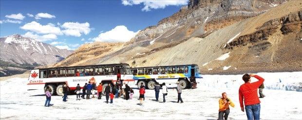 앨버타 애서배스카 빙하를       찾은 관광객들.