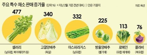 """""""한국에 이런 맛은 없었다""""…특수채소 열풍"""