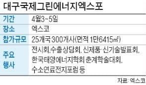 내달 대구국제그린엑스포…글로벌 태양광기업 '총출동'