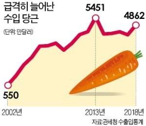 중국 당근 수입 전면금지…단체급식·외식업계 '비상'