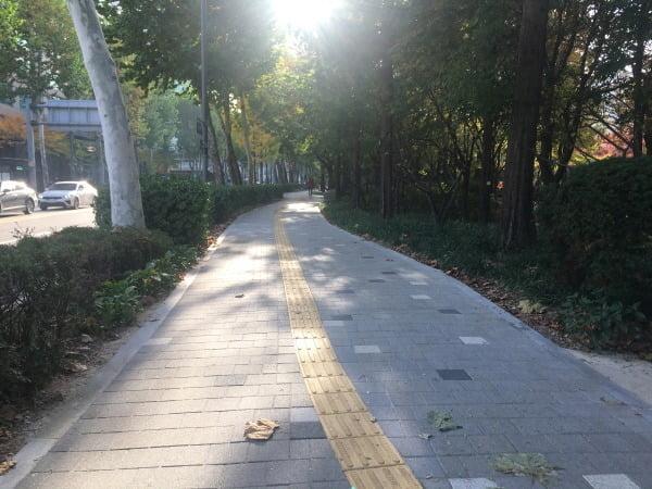 """""""유모차·휠체어도 편하게""""…서울시, 보도정비 262억원 투입"""