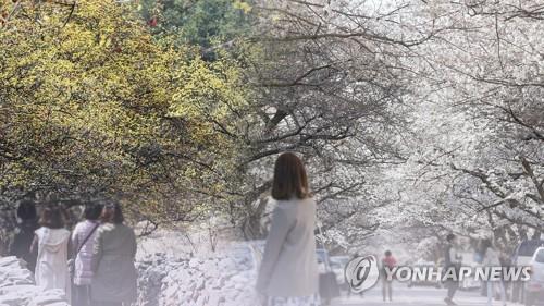 봄 행락철 안전관리대책 점검…국가안전대진단 진행률 54%