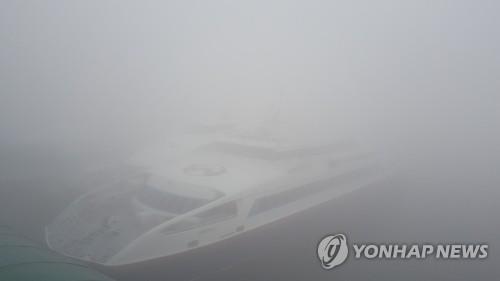 '미세먼지와 안개'에 발 묶인 여객선·항공기