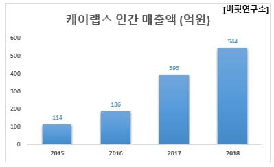 케어랩스 연간 매출액 (억원)