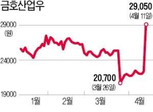 자구안 '퇴짜'에도…금호그룹株 일제히 상승