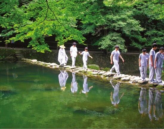 전남 장성 백양사의 숲 걷기 프로그램.