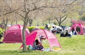 한강변 텐트, 사방 닫아두면 과태료 100만원