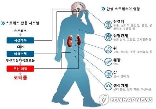 스트레스 진단 1년 내 심혈관질환 발병 위험 64%↑