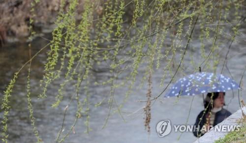 오후부터 전국에 '봄비'…충청 이남지역엔 미세먼지 '나쁨'